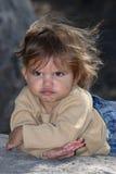 саванна Стоковая Фотография RF