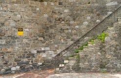 Саванна, Georgia/Соединенные Штаты - 25-ое июня 2018: Исторические шаги в саванну добавляют шарм к зонам улицы центра города и ре стоковые фотографии rf