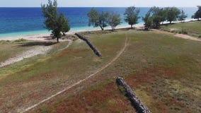 Саванна Puru Kambera, остров Sumba Индонезия сток-видео