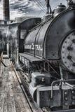 30 саванны центральный Стоковые Фотографии RF