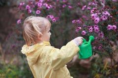 садовник немногая Стоковое фото RF