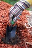 садовник подготовляет почву Стоковая Фотография RF