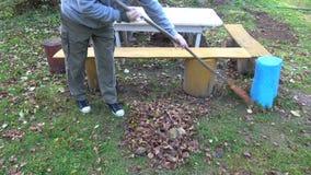 Садовник сгребая листья осени от двора усадьбы видеоматериал