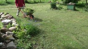 Садовник транспортируя отрезанную траву с тачкой видеоматериал