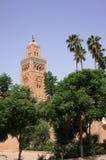 садовничает мечеть koutoubia Стоковое Фото