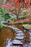 садовничает японец Стоковое Изображение
