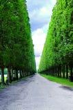 садовничает versailles стоковые фотографии rf