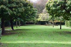 Садовничайте с деревьями, парком Синглтона, Суонси, Великобританией Стоковая Фотография