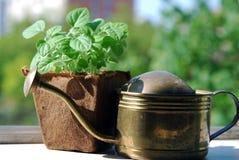 садовничать балкона Стоковые Фото