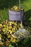садовничать осени Стоковые Фотографии RF