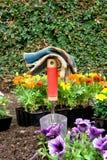 садовничать цветков оборудования Стоковые Изображения RF