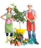 садовничать стоковое изображение