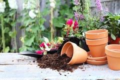 садовничать Стоковые Фото