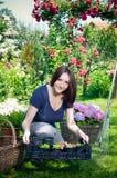 садовничая детеныши женщины стоковая фотография rf