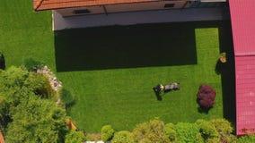 Садовничая деятельность - газонокосилка режа траву, Д-р сток-видео