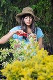 садовничая женщина Стоковое Изображение