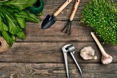 Садовничая инструменты и растительность на деревянном столе весна сада Стоковая Фотография RF