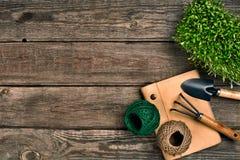Садовничая инструменты и растительность на деревянном столе весна сада Стоковые Изображения