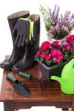 Садовничая инструменты и цветки как моча чонсервная банка, резиновые ботинки, Стоковая Фотография