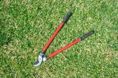 Садовничая инструменты на предпосылке травы зеленой стоковые фотографии rf