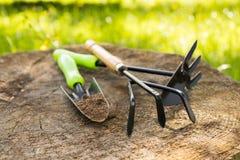 садовничая инструменты Сапка, лопатка на деревянном саде пня весной стоковая фотография