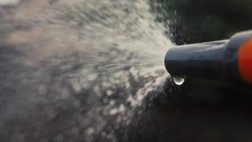 Садовничая концепция заботы сада брызгать видео замедленного движения воды образа жизни женщина держа мочить шланга сада акции видеоматериалы