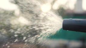 Садовничая концепция заботы сада брызгать видео замедленного движения воды женщина держа мочить шланга сада Садовник с видеоматериал