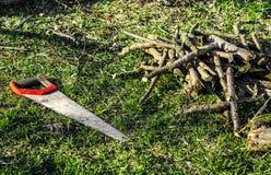 Садовничая работа Ручная пила с красными остатками ручки на зеленой траве рядом с отрезанными ветвями стоковая фотография rf