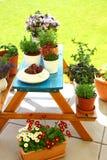 садовничая терраса крыши Стоковые Фото