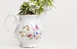 Садовничая чашки фарфора Стоковые Фото