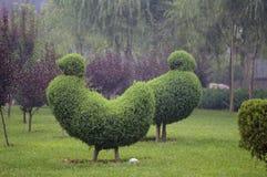 Садовническая модель Стоковое Изображение RF
