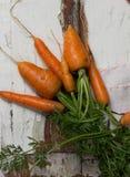 Садоводство Свежие чистые моркови на белой таблице Предпосылка взгляд сверху свежих овощей Свежий пук морковей на белом backgroun Стоковые Фото