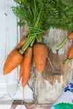 Садоводство Свежие чистые моркови на белой таблице Предпосылка взгляд сверху свежих овощей Свежий пук морковей на белом backgroun Стоковые Изображения