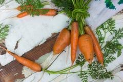 Садоводство Свежие чистые моркови на белой таблице Предпосылка взгляд сверху свежих овощей Свежий пук морковей на белом backgroun Стоковое Фото