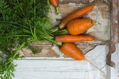 Садоводство Свежие чистые моркови на белой таблице Предпосылка взгляд сверху свежих овощей Свежий пук морковей на белом backgroun Стоковое Изображение