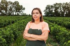 Садоводы черной смородины проектируют работу в саде с сбором, женщиной с коробкой ягод стоковые изображения rf