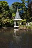 Сады Веллингтона ботанические Стоковые Изображения