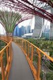 Сады заливом Сингапуром Стоковые Фото
