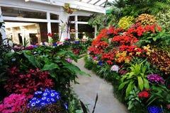 сады цветков butchart Стоковые Изображения
