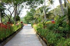сады Стоковое Изображение RF