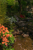 сады Стоковое фото RF