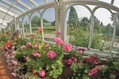 сады birmingham ботанические стоковое изображение rf
