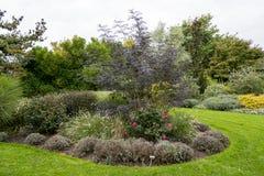 Сады Bressingham - к западу от Diss в Норфолке, Англия - объединенные стоковое изображение