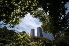 сады hamarikyu стоковая фотография rf