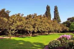 сад внутри взгляда тропы правящего s парка Стоковая Фотография RF