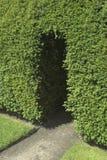 сад входа Стоковые Изображения