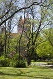 Сад в Мюнхен Стоковое фото RF
