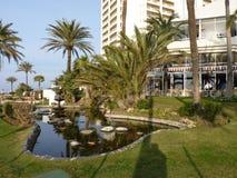 Сад гостиницы в Испании с пальмами Стоковое фото RF