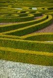 Сад изгороди Стоковые Фотографии RF