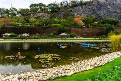Сад 13 Китая Шанхая ботанический стоковые изображения rf